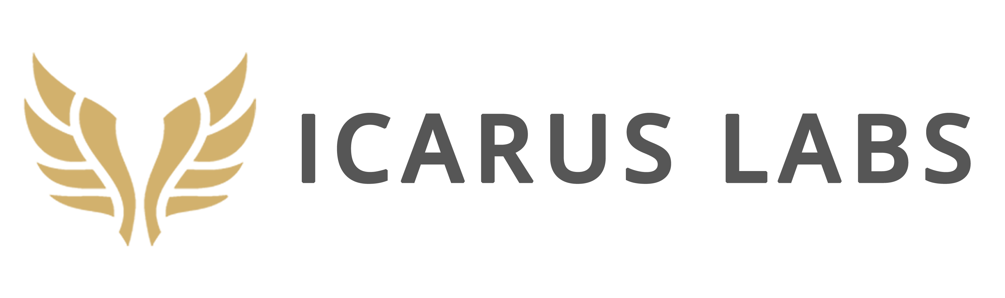 Icarus Labs